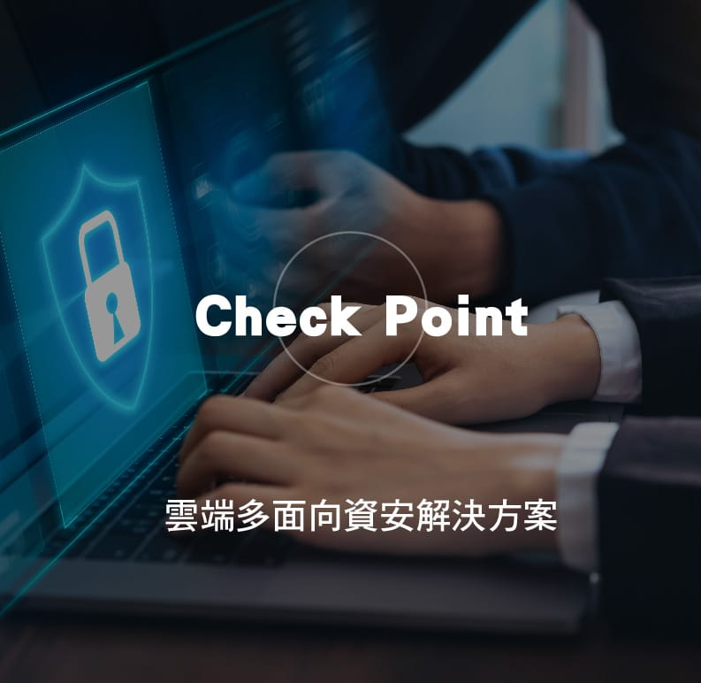 Check Point 解決方案